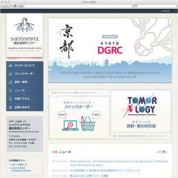 ショウジョウバエ遺伝資源センター 日本語サイト
