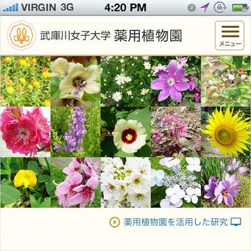 武庫川女子大学 薬用植物園(スマホ)